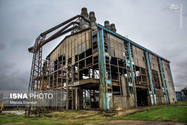 تعطیل شدن کارخانه «نکا چوب» با ۴۰۰۰ کارگر