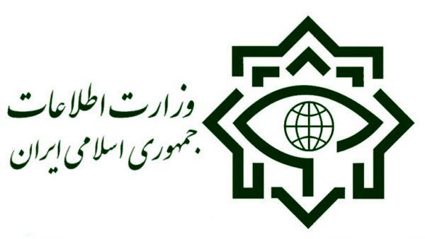 وزارت اطلاعات به گزارش مجلس درباره دوتابعیتیها واکنش نشان داد