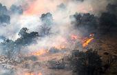 فرماندار کهگیلویه: مهار آتش سوزی خائیز کُند پیش می رود