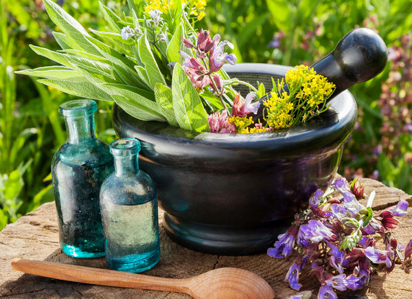 ظرفیت های قابل توجه در بخش گیاهان دارویی در کشور