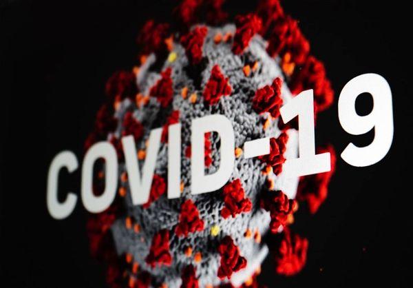 جزئیات کیفیت انتشار ویروس آنفلوآنزا و کرونا