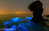 زیباترین ساحلی که ممکن است در خلیج فارس ببینید
