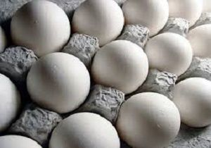 قیمت تخم مرغ ۵۰۰ تومان افزایش یافت