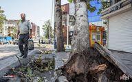 یک کشته بر اثر طوفان در شهرستان خوی