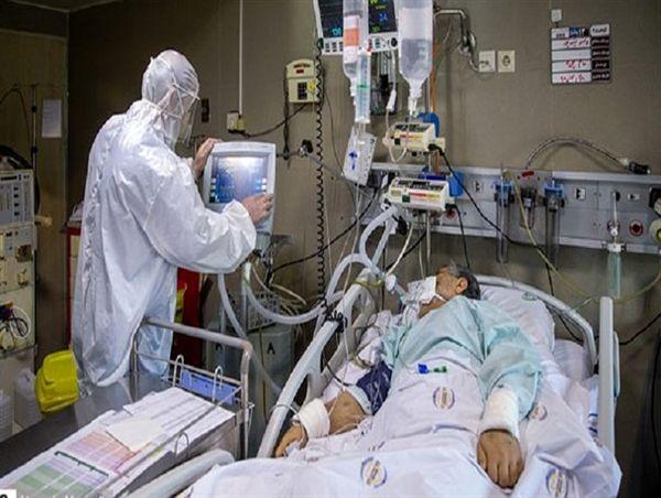 اقدام عملی وزیرکار برای کمک به بیماران کرونایی/ کارکنان اهدا کننده پلاسما به نحوه شایسته تشویق میشوند