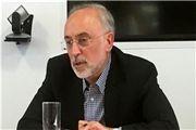 صالحی: چالش ایران و آژانس با تدبیر بزرگان نظام حل شد
