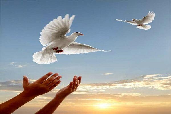 آزادی؛ هدیه عاشقان حسین(ع) به زندانی بدهکار البرزی