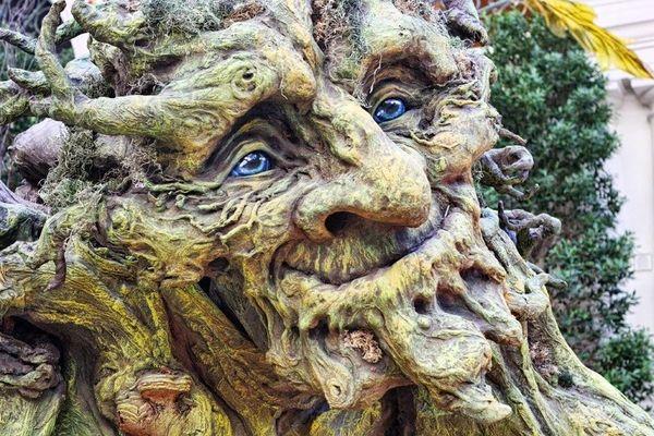 پرورش غول درختی در بلژیک (عکس)