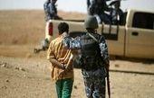 بازداشت ببر داعش در عراق