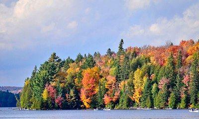 تصاویری زیبا از پاییز که چشم ها را خیره میکند