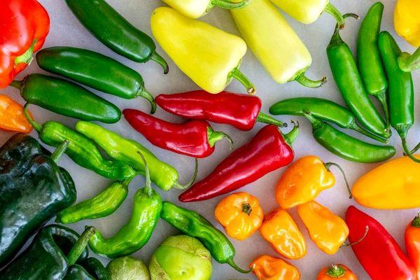 فلفل سبز تند بخوریم یا شیرین
