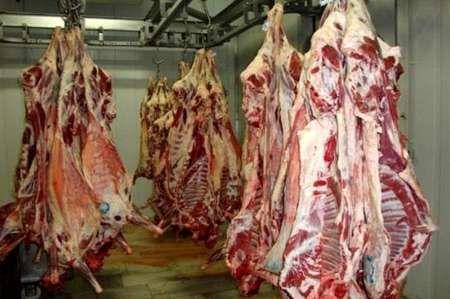 250 تن گوشت گرم گوسفندی در البرز توزیع شد