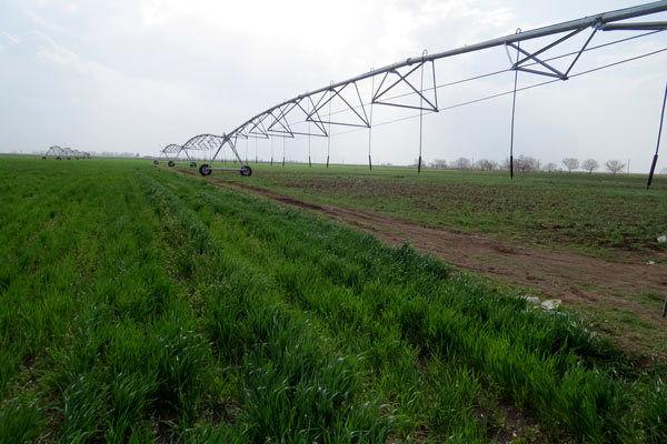 ۷۷۰ میلیون کمک بلاعوض به مرمت قنوات کشاورزی خاتم اختصاص یافت