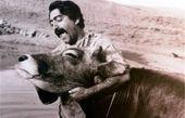 پیدا شدن تصاویر تست بازیگری مشایخی، انتظامی و دولتآبادی